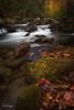 Jones Gap State Park (Reid Northrup) Tags: fallcolor autumn cascade fall forest jonesgap landscape leaves longexposure rocks southcarolina tree trees water color nikon rrs reidnorthrup jonesgapstatepark