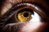 Nikkor 105 mm F4 Micro AIS : Test shots on Elodie's eyes : Nikon D810 (Benjamin Ballande) Tags: nikkor 105 mm f4 micro ais test shots elodies eyes nikon d810