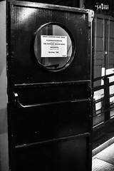 Sleepmakeswaves + The Physics House Band + Vasudeva - I.BOAT - Les Musicovores (S@titi) Tags: sleepmakeswaves thephysicshouseband vasudeva lesmusicovores iboat bordeaux gig live concert noiretblanc blackandwhite