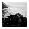 Distance (Studio fotoplastikon) Tags: foma blackandwhite monochrome pomerania pomorze beach sea baltic