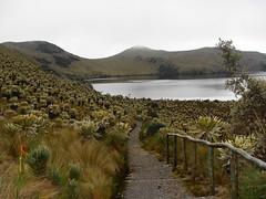 Sendero a la laguna (Oscar Padilla Álvarez) Tags: ecuador
