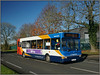 34817. London Road (Jason 87030) Tags: rugby daventry northampton northants northamptonshire londonroad stagecoach midlands november 2017 sunny light weather cool bus slf pointer easy 123 abc s22abc 34817 sony ilce alpha a6000 nex lens tree next birds tits nature amateur scene roadside town uk england livery red white blue orange wheels route service d2 timetable