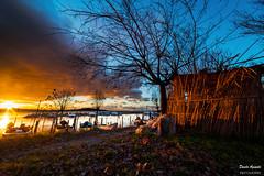 L'ora di fuoco (Danilo Agnaioli) Tags: lagotrasimeno umbria italia natura tramonto alberi acqua barche autunno sole canon6d