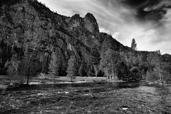 While Out on a Morning Stroll, I Came Upon a River and Saw Mountains (Black & White, Yosemite National Park) (thor_mark ) Tags: nikond800e lookingsouth day6 triptopasoroblesandyosemite yosemitenationalpark blackwhite silverefexpro2 capturenx2edited colorefexpro pacificranges sierranevada yosemiterittersierranevada centralyosemitesierra yosemitevalley outside trees hillsideoftrees blueskieswithclouds grassymeadow mountains mountainsindistance mountainsoffindistance evergreens landscape nature river mercedriver riverbank sentinelrock mountainside canvas portfolio project365 california unitedstates