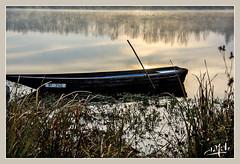 Peit matin d'automne en bord de Loire / Early morning on the banks of Loire (christian_lemale) Tags: loire river rivière fleuve touraine luynes eau water ciel sky matin morning lever soleil sunrising france nikon d7100