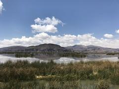 IMG_4545 (1) (massimo palmi) Tags: perù peru titicaca uro uros lagotiticaca laketiticaca floatingislands floating islands isolegalleggianti puno totora