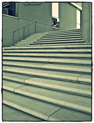 Step it up and go (Alea ♥) Tags: scenery texture treppe staircase stairs beton concrete stufen hamburg hafencity norddeutschland germany fenster window