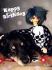 Toshi and Simba anniversary (Lily Skadi) Tags: bjd abjd balljointeddoll dollzone floy dollzonefloy dz legit doll fujifilmfinepixs2980 dog animal sd toshi simba hybridbjd hybriddoll