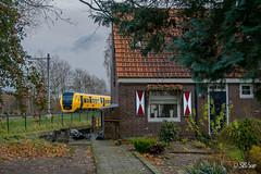 28/11/2017 | Raalte (SB-2013) Tags: ns buffel dm 90 dm90 trein zwolle raalte nijverdal wierden enschede stoptrein nederlandse spoorwegen dorp huizen treinen sprinter 28 november 2017 dieseltrein dieselmaterieel