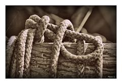 La corde (Marc Lacampagne) Tags: canon eos dlsr tamron 90mm 28 dof closeup detail corde ngc hdr hdraward nb noiretblanc monochrome explore flickersbest