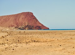 Tenerife (Foto Vivi) Tags: oceano vento surf estate isolecanarie