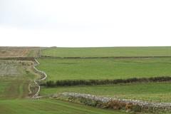 muur als grens england schotland (JANKUIT) Tags: great brittain schotland scotland edinburg edinburgh muur grens england