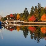 Yacht Club Reflections thumbnail