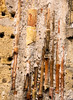 20171028-071 (sulamith.sallmann) Tags: altstadt antik background hintergrund italia italien italy laloggia oberfläche palermo rohre sizilien surface textur texture ton sulamithsallmann
