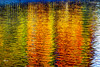 水面に映るカラ松の黄葉 (uko2) Tags: artofimages visualart