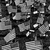American (Thomas Hawk) Tags: americanflag harriscounty houston texas usa unitedstates unitedstatesofamerica bw flag fav10 fav25 fav50