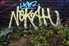 Linkz / Nekah (Alex Ellison) Tags: linkz uga nekah 1t ctr tag urban graffiti graff boobs
