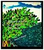 Dedicated to Israel and it's trees of forestry._created& written by Sherly V Thomas Indian-American DeZi Gal artist. (sherlydezigalvthomas) Tags: israel telavivisrael naveenwilliamsidneyandrews jordan mafraqjordan tibnahjordan hatimjordan ammanjordan alaqabahjordan qumaymjordan sherlyvthomasindianamericandezigalartist sherlyvthomas actorsalmankhan salmankhanbeinghumanceo salmankhanbandrawestmumbai bandrawestmumbai jerusalemisrael anaheimcalifornia newdelhiindia losangelescaliforniausa