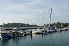 DSC_6914 (olyaterekhova) Tags: singapore marina