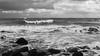 wind from behind (de_frakke) Tags: coast belgium noordzee merdunord westvlaanderen middelkerke golven landscape landschap ganzen geese