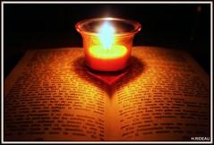 Lecture à la bougie. (Les photos de LN) Tags: lecture livre bougie lueur ambiance intimité lumière composition