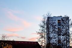 Sonnenuntergang im November (p.schmal) Tags: olympuspenf hamburg farmsenberne sonnenuntergang sunset november
