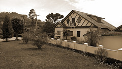 casa da xilo (medeirosisabel16) Tags: tree casa da xilogravura woodcut house spring primavera natura natureza sépia campos do jordão cell phone celular sky flower interior beauty