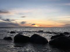 (sergei.gussev) Tags: tallinn harjumaa harju kesklinn estonia kloostrimets kadrioru park haabneeme pirita beach