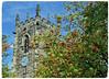 The Rowans (littlestschnauzer) Tags: emley village agricultural west church tower rowan berries red clock st michaels yorkshire 2011 uk parish michael archangel cofe
