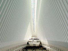Light-flooded architecture (PeterCH51) Tags: usa us ny newyork manhattan calatrava architecture santiagocalatrava worldtradecentertransportationhub worldtradecenter transportationhub wtc peterch51 newyorkcity nyc lightflooded america
