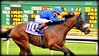 City Plan - 2017 Gold Rush Stakes (billypoonphotos) Tags: tapeta golden gate fields berkeley 2017 jockey horse racing thoroughbred dirt track photo picture photography photographer billypoon billypoonphotos nikon d5500 18140mm nikkor news stretch win finish synthetic race 18140 mm sign goldrushstakes goldrush goldengatefields cityplan tylerconnor godolphin