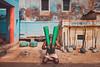 Wrestler. Varanasi, India (Marji Lang Photography) Tags: akhara banaras benares bã©narã¨s ganga ganges gaudolia godaulia gowdolia india indianman indiansubcontinent kashi kushtiakhara kustiwrestler kustiwrestling pehlwan pehlwani travelphotography uttarpradesh varanasi akhadas anaerobicactivity athlete athletic clubs colors composition courtyard cultural culture daylight dhoti documentary exercise exterior gada gadas ghats green gymathlete gymweights heavy hindu holycity indian joris mace man oldvaranasi oldbuilding oldcity oneman oneperson people photojournalism strength strong traditional traditionalwrestling travel weightlifter weightlifting weights weightsswinging wrestler