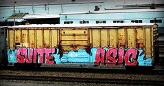 suite - asic (timetomakethepasta) Tags: suite asic etc hs boxcar freight train graffiti art benching selkirk new york