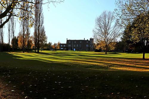 Rochford Autumnal. 1
