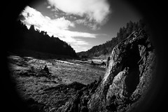 Forgotten Adventure Jan 2017 (C. Campbell) Tags: oregon oregonexplored eugeneoregon adventures naturewalk highway58 eugene pisgah mou