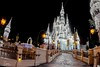 Shimmering Ice Palace! (andrew_carter091) Tags: disneyphotography disneyattraction disney disneycolors disneyparks waltdisneyworldresort disneymovie waltdisneyworld disneyside disneyphotographer disneycastle disneyresort waltdisney disneycharacter disneyvacationclub disneyaddict disneyworld wdw magickingdom mainstreetusa cinderella cinderellacastle castle dreamlights ice snow winter holidays merrychristmas christmas shimmer glistening longexposure nighttimephotography nighttime camera photo mykissimmee professionalphotographer photographer photography travelphotographer travelphotography nikon nikond3300
