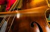 motion blur! (grahamrobb888) Tags: d800 nikon nikond800 sigma sigma20mmf18 scotland doublebass kontrabass bullfiddle bowanoun music performing practice practise shiny wood dayjob work