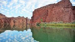 DSC07316 (lovz2hike) Tags: lake havasu bass fishing large mouth topock colorado river ranger boat reata small lovz2hunt lovz2hike family fun adventure arizona winter november