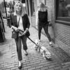 Dog Walker, Boston, Massachusetts (81431-BW) (John Bald) Tags: bw beaconhill boston massachusets blackandwhite blondewoman brick bricksidewalk candid city daytime dog dogowner dogwalker sidewalk street streetphotography urban
