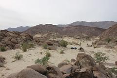 IMG_5188 (Gibrán Nafarrate) Tags: laguna salada bajacalifornia lagunasalada baja vw volkswagen desert desierto nature camping canon