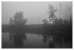 Un fiume di nebbia (Outlaw Pete 65) Tags: paesaggi landscapes cielo sky nebbia fog alberi trees fiume river acqua water natura nature biancoenero blackandwhite nikond600 nikkor24120mm monticellidoglio lombardia italia