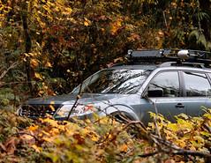 2012 Subaru Forester (donaldgruener) Tags: roofbasket shovel quickfist offroadlights sh forester subaru subaruforester