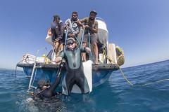 1106_11a (KnyazevDA) Tags: disability disabled diver diving deptherapy undersea padi underwater owd redsea buddy handicapped aowd egypt sea wheelchair travel amputee paraplegia paraplegic