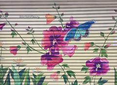 #100GATESPROJECT (TheMachineStops) Tags: 2017 outdoor nyc newyorkcity manhattan streetart urbanart graffiti chinatown rolldowngates flowers surfaceofbeauty 100gatesproject iphone6 walkerstreet poweredbypride