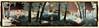 Sense Titòl #0167 (Ar@lee) Tags: airelibre bordeparafotos d50 espectrocompleto fotografíainfrarrojos fullspectrum filtro680nm colours photographyinfrared ir nikond50 paisaje panorámica trees yellow red rojo naturaleza blue green azul verde cabaña hozdelhuécar cuenca