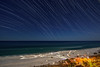 Panama City Beach Star Trails and Night Photography (Cathy Neth) Tags: 1424mm landscape adventure adventurer astronomy astrophotography beach beachlandscapes beachphotography beachphotos beachwithstartrails beautifullandscapes beautifulocean blueocean cathyneth create d810 discover explore exploretocreate florida floridalandscapes galaxy landscapephotography landscapes longepxosure longexposurephotography moon nasa nature naturesbeauty night nightphotographyspace nightscape nikon nikond810 ocean oceanphotography oceanwithstartrails oceans panamacity panamacityphotography panamacitystartrails sky skyscape startrailphotography startrails starscape thesummit wander water watermovement photography space