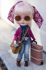 international traveller (JennWrenn) Tags: blythe doll custom stellasavannah pinkhair international travel passport suitcase carryonluggage camera mim