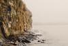 Sea Cliff (buffdawgus) Tags: canon5dmarkiii canonef24105mmf4lisusm capitola landscape lightroom6 pacificcoast pacificocean santacruzcounty seascape topazsw westcoast