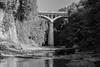 bridge (jellamalo) Tags: nature hike river adventure blakandwhite