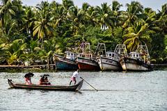 Kerala Backwaters (Valdas Photo Trip) Tags: india kerala backwater travel travelphotography